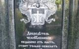 1308216178_pik_v_pamyatnik_safonovu_4.jpg
