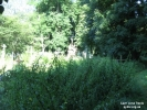 1308216390_pik_v_polskijj_cvintar_26.jpg